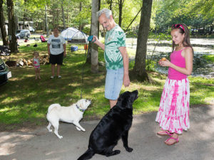 your pets are welcome at circle cg farm campground in bellingham ma
