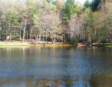 get outdoors in ma at circle cg farm campground